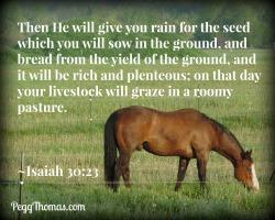 8x10 Isaiah 30-23