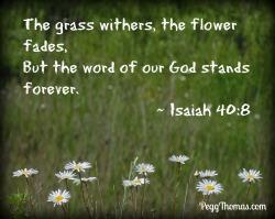 8x10 Isaiah 40-8