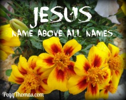 8x10 Jesus name above all names