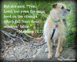 8x10 Matthew 15-27