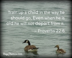 8x10 Proverbs 22-6