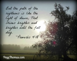 8x10 Proverbs 4-18