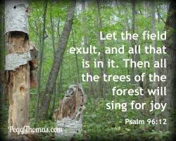 8x10-psalm-96-12