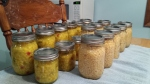 Corn Relish and plain sweet corn 8-25-15